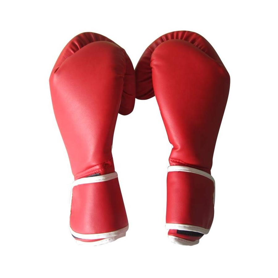 Guantes de Boxeo PRO